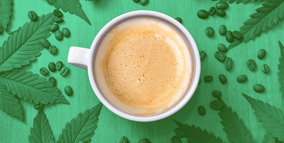 What Is CBD Coffee And The Top Brands Who Sell It