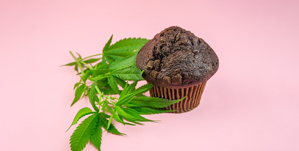 The Complete Guide to CBD Edibles in the UK
