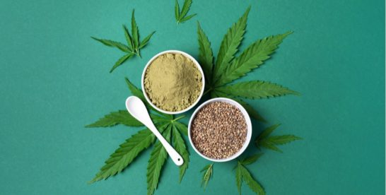 Hemp Powder | Seeds | Oil