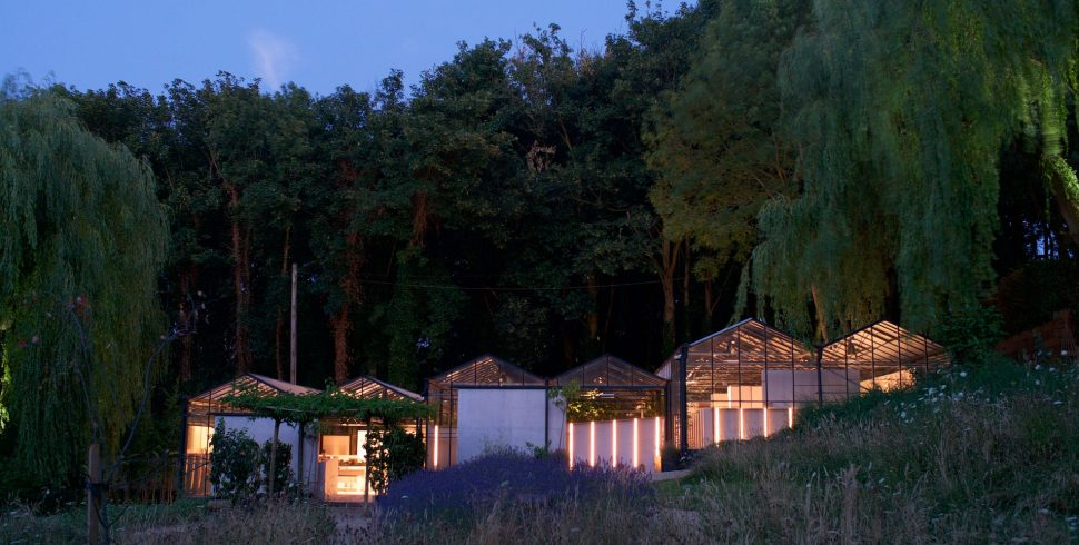 Rewind/Rewild: An Exhibition Exploring Ecological Art in a Restored Glasshouse
