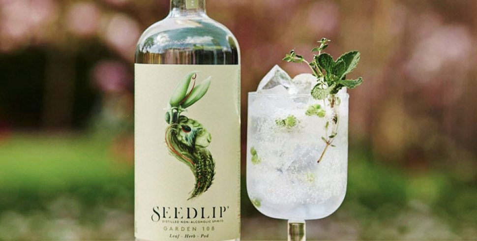 The Best Gins Causing A Stir For International G&T Day